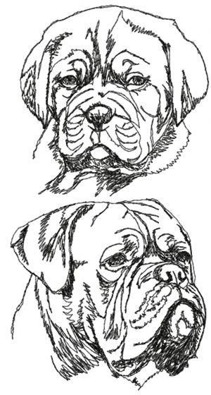 Dogue De Bordeaux coloring #19, Download drawings
