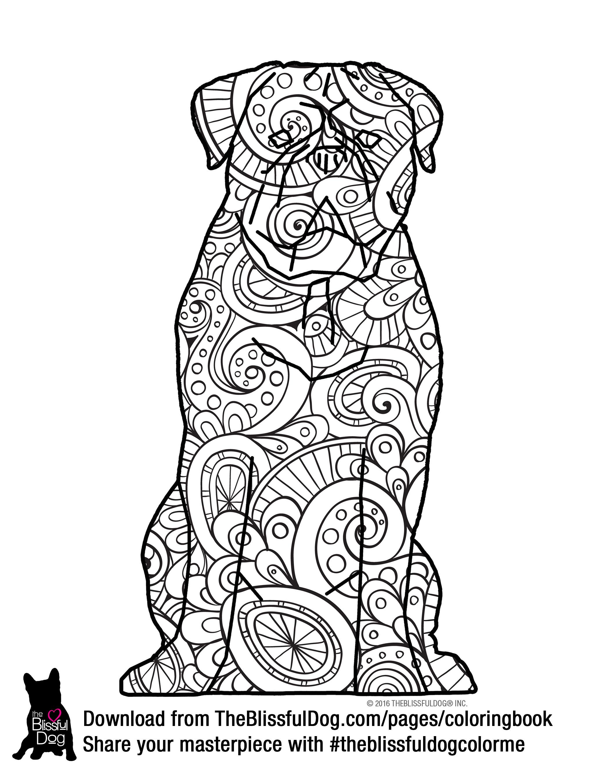 Dogue De Bordeaux coloring #5, Download drawings