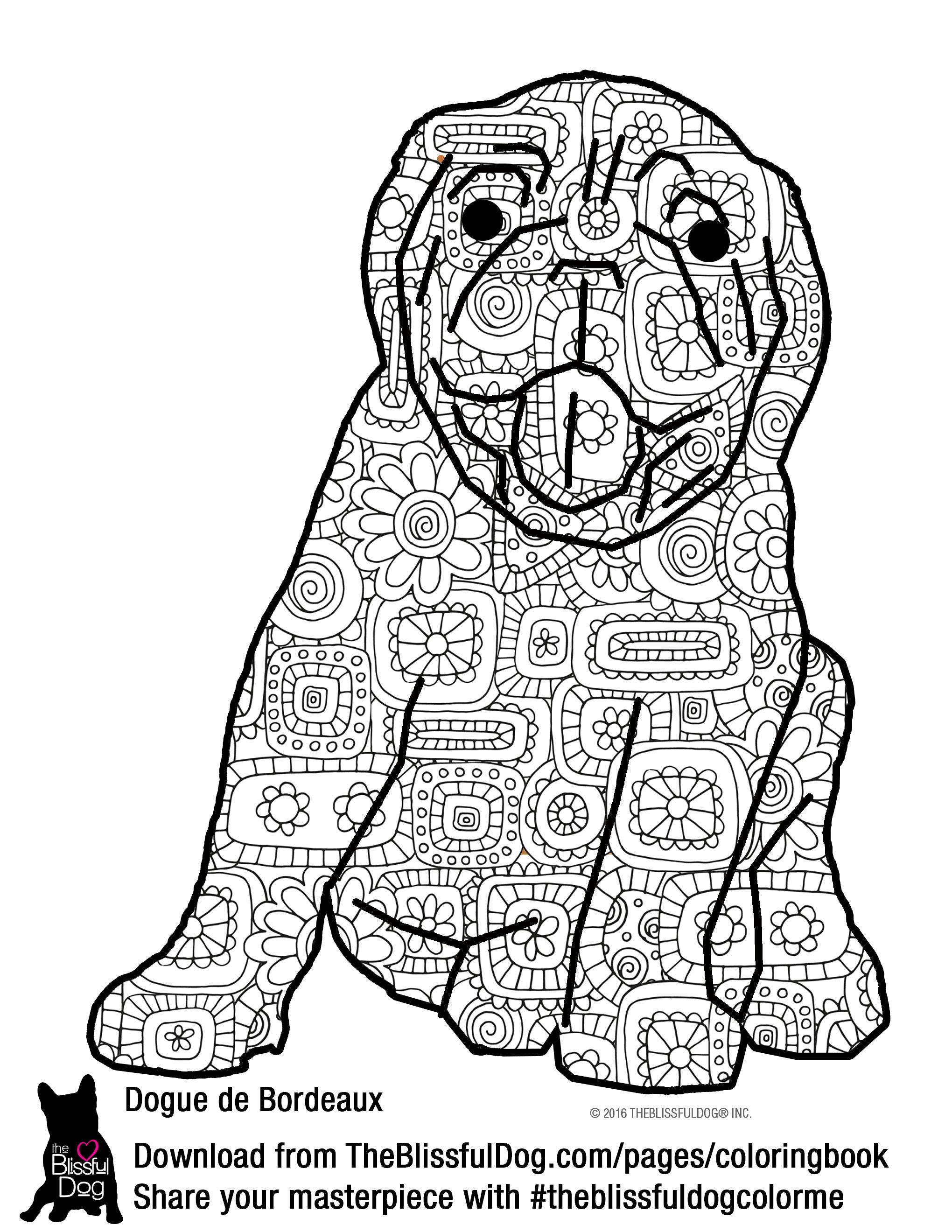 Dogue De Bordeaux coloring #9, Download drawings