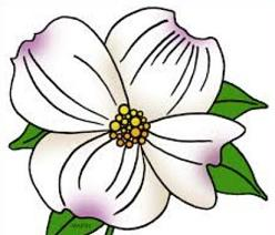 Dogwood clipart #1, Download drawings