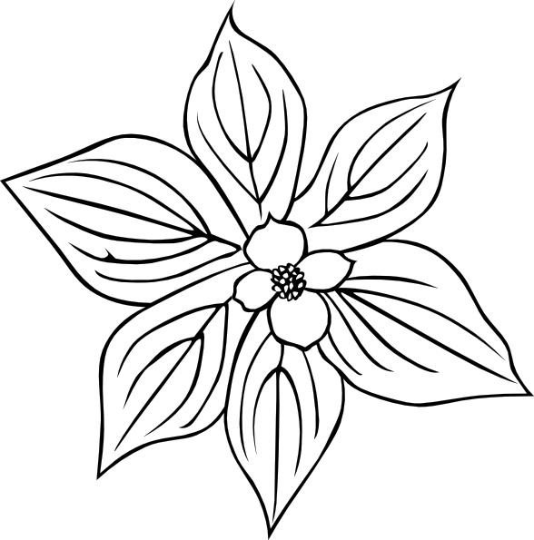 Dogwood svg #2, Download drawings