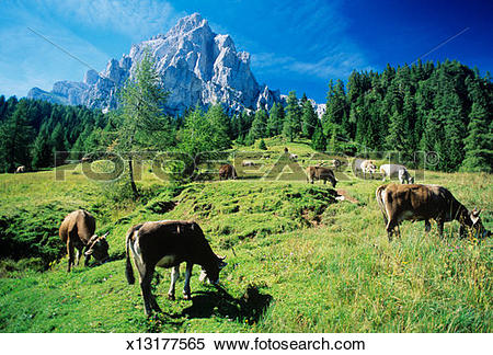Dolomites clipart #2, Download drawings
