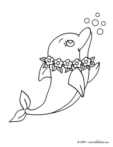 Dolphin coloring #2, Download drawings