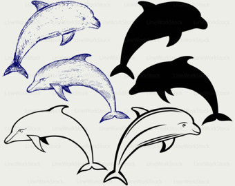 Dolphin svg #1, Download drawings
