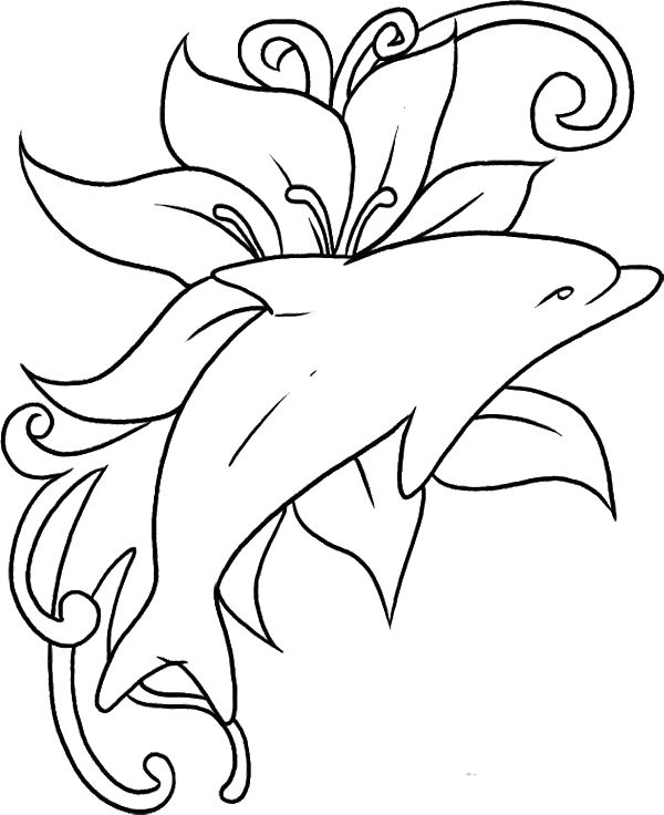 Dolphins coloring #2, Download drawings
