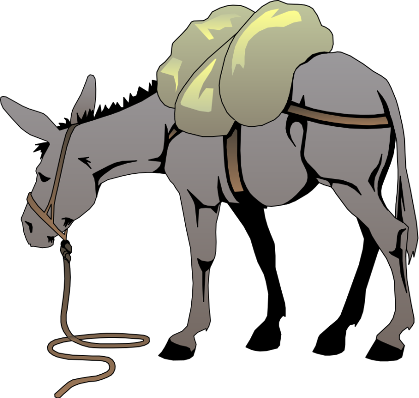 Donkey clipart #6, Download drawings