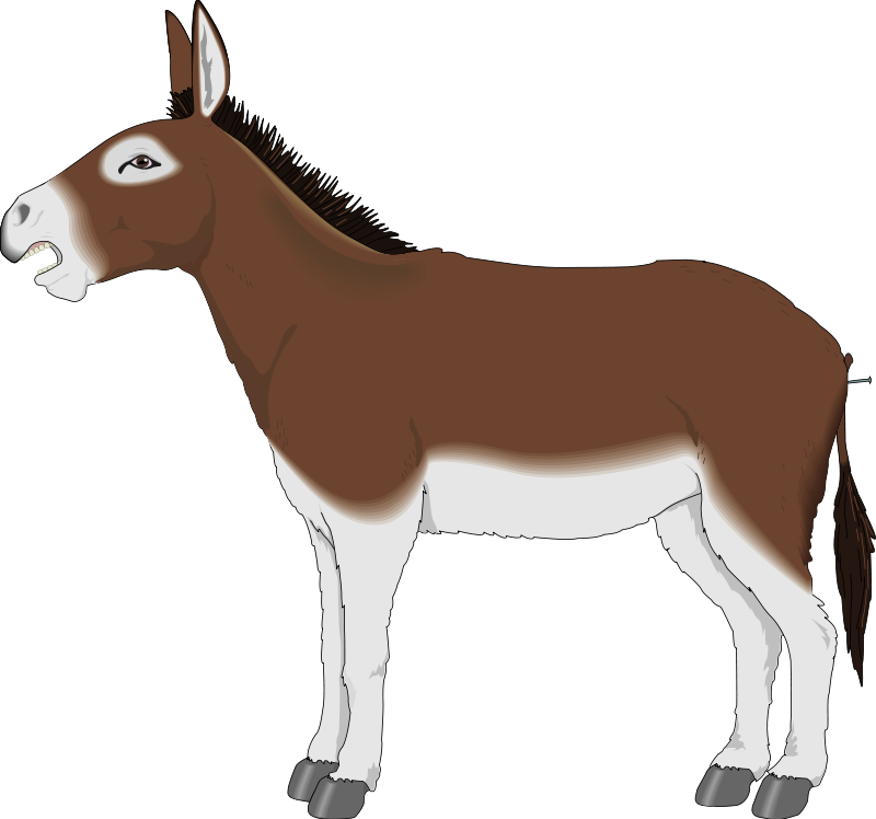 Donkey clipart #4, Download drawings