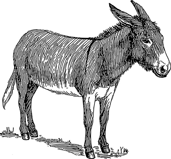 Donkey svg #1, Download drawings