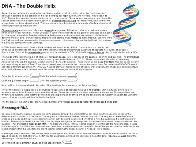 Double Helix coloring #7, Download drawings