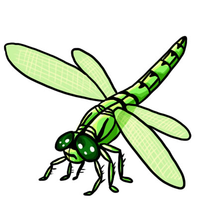 Dragonfly clipart #16, Download drawings