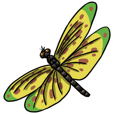 Dragonfly clipart #11, Download drawings