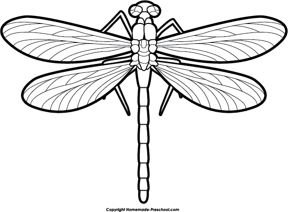 Dragonfly clipart #1, Download drawings