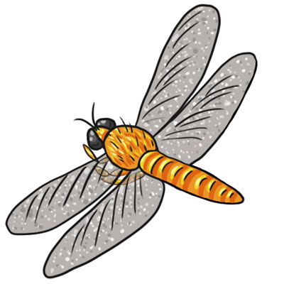 Dragonfly clipart #12, Download drawings