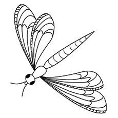 Dragonfly coloring #18, Download drawings