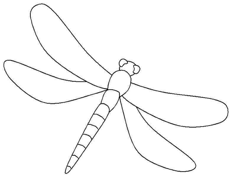 Dragonfly coloring #7, Download drawings