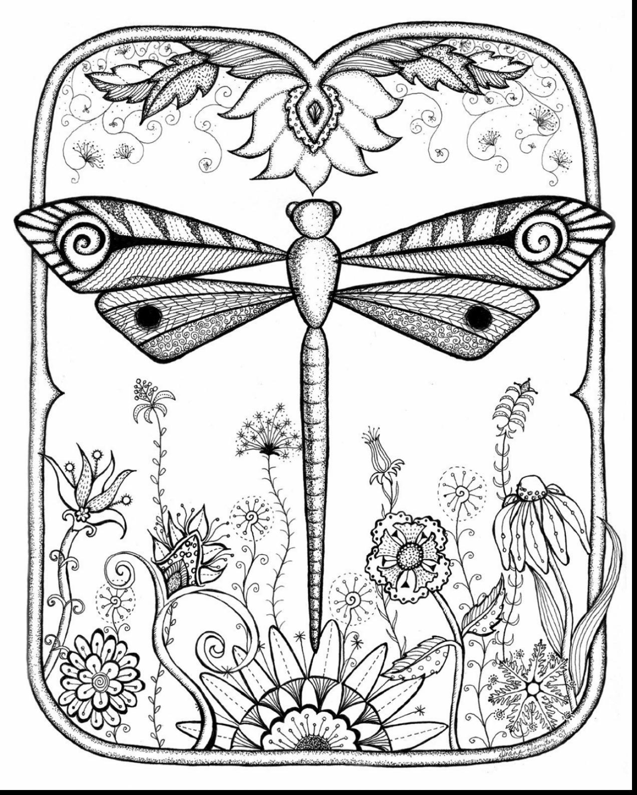 Dragonfly coloring #1, Download drawings