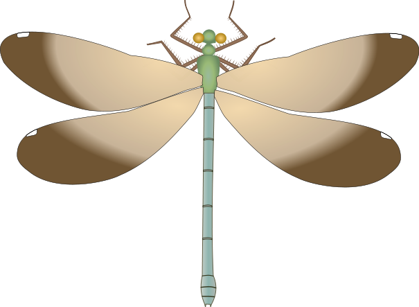 Dragonfly svg #10, Download drawings