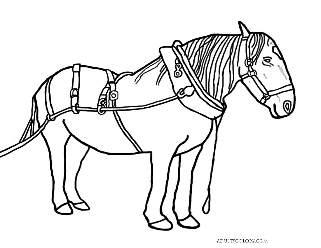 Draught Horse coloring #14, Download drawings