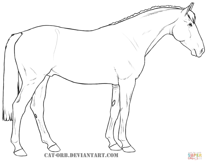 Draught Horse coloring #11, Download drawings