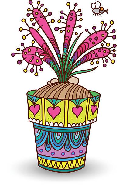 Drosera clipart #5, Download drawings