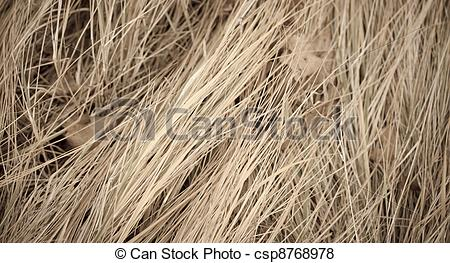 Dry Grass clipart #18, Download drawings