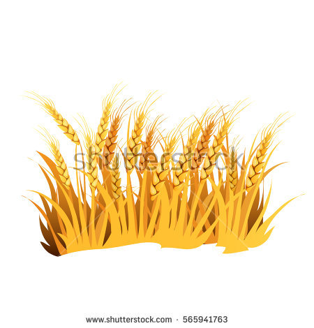 Dry Grass clipart #17, Download drawings