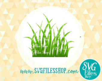 Pampas Grass svg #11, Download drawings