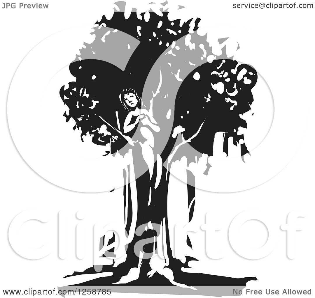 Dryad clipart #13, Download drawings