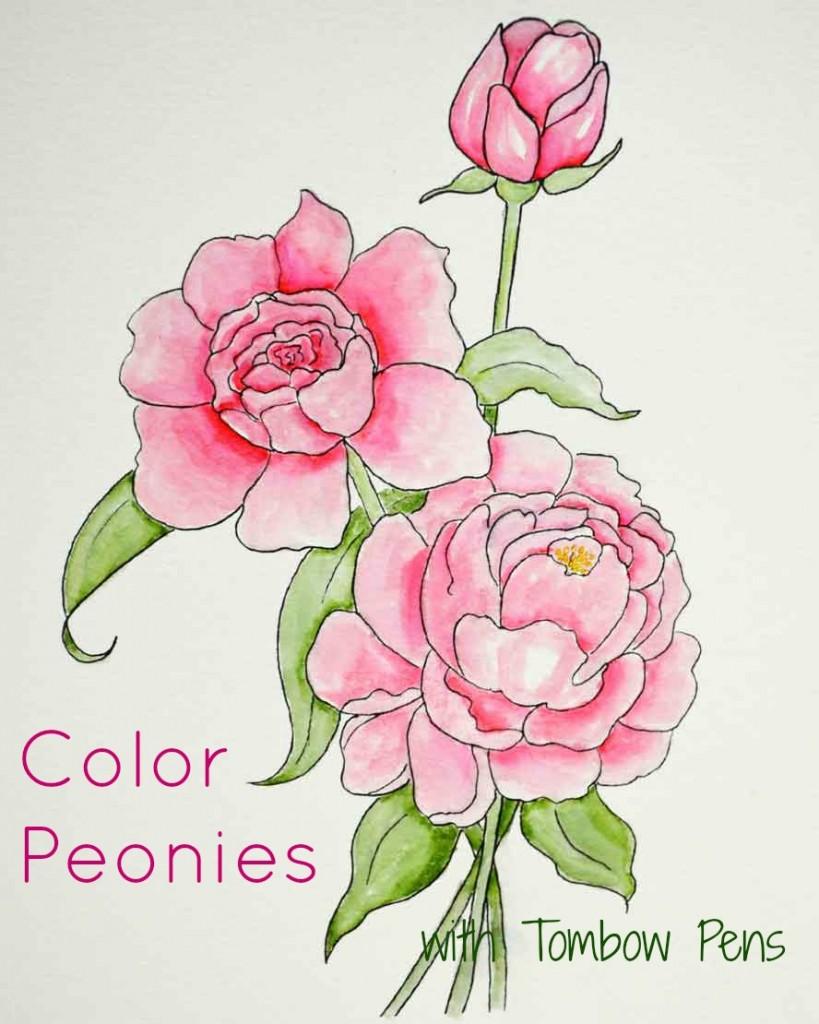Dual coloring #13, Download drawings