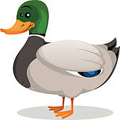 Duck clipart #9, Download drawings