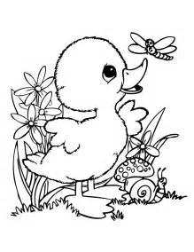 Duckling coloring #7, Download drawings