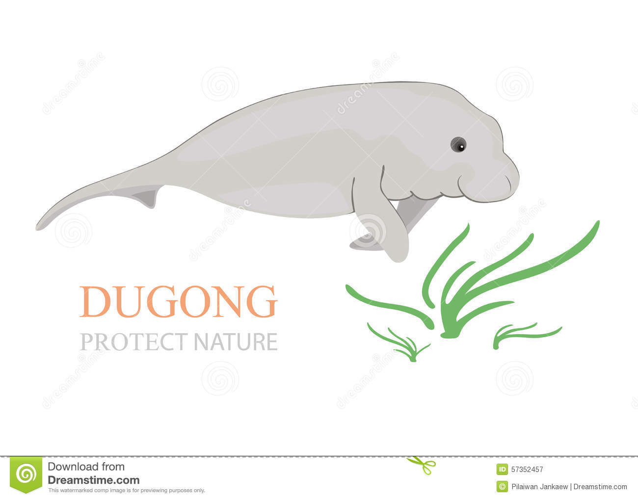Dugong clipart #15, Download drawings