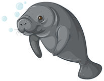 Dugong clipart #20, Download drawings