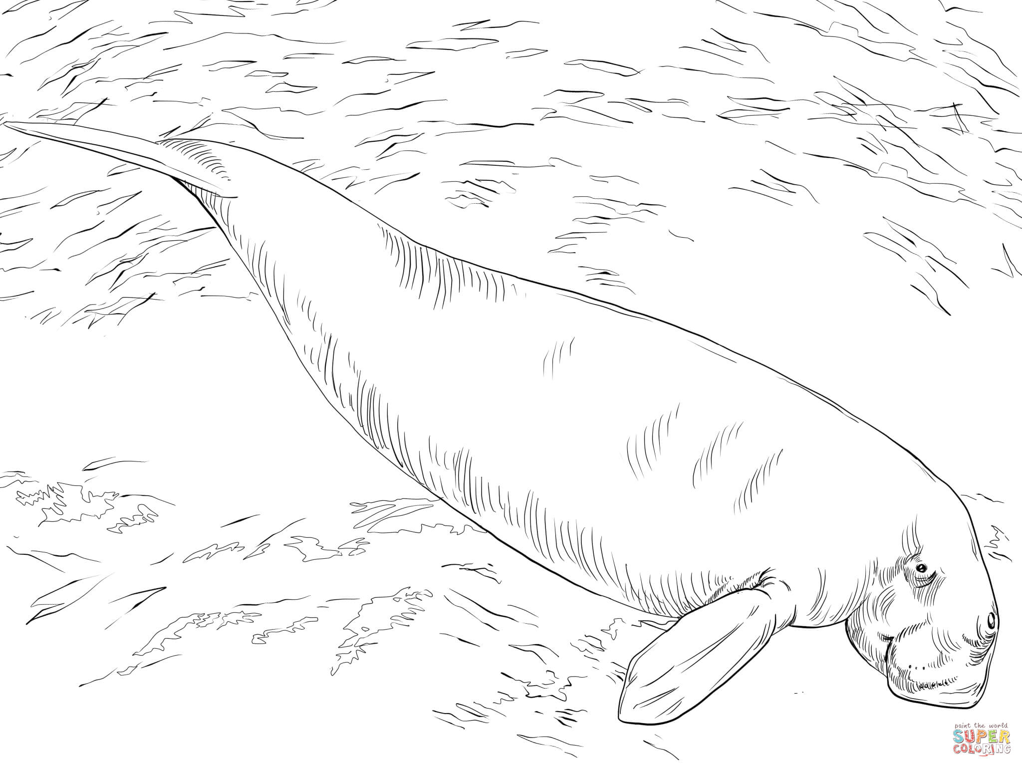 Dugong coloring #7, Download drawings
