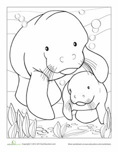 Dugong coloring #18, Download drawings