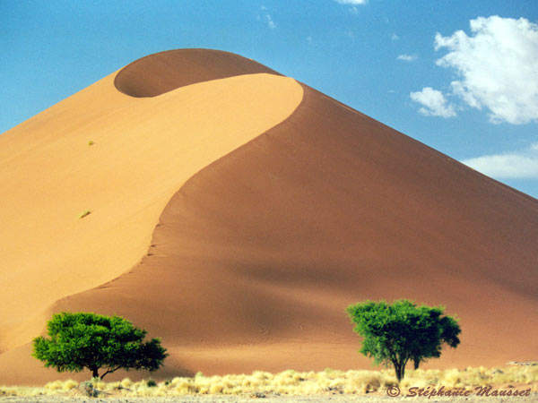Dune clipart #16, Download drawings