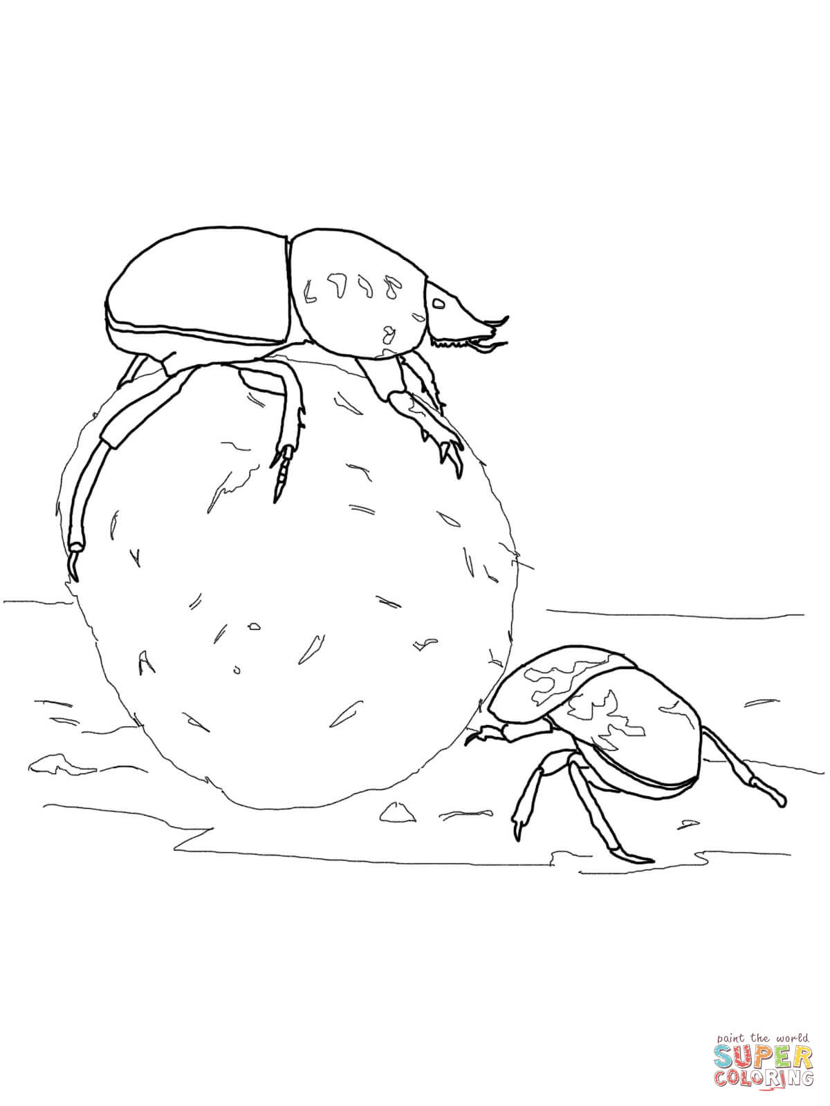Dung Beetle coloring #10, Download drawings
