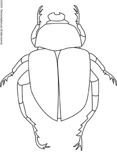 Dung Beetle coloring #6, Download drawings