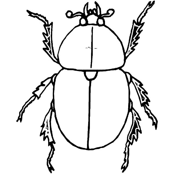 Dung Beetle coloring #1, Download drawings