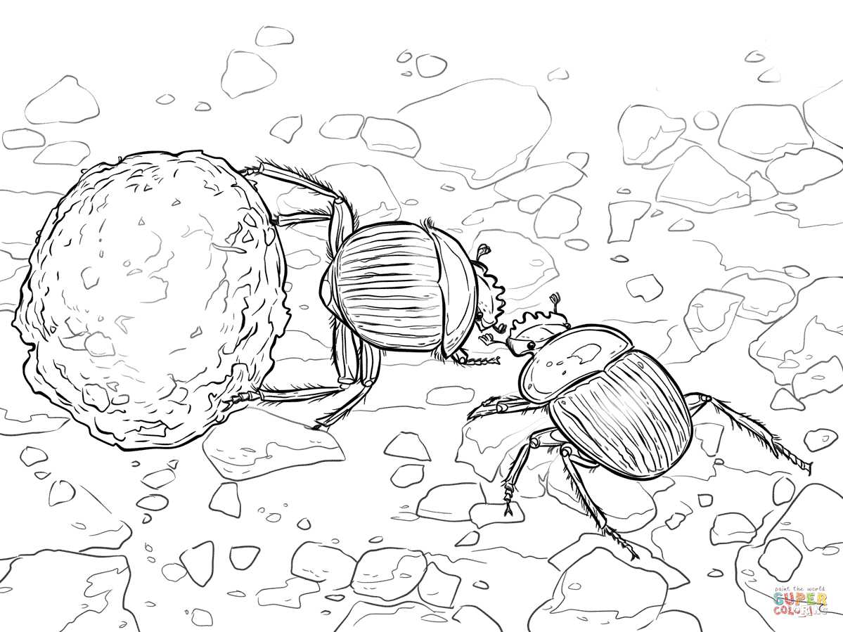 Dung Beetle coloring #13, Download drawings