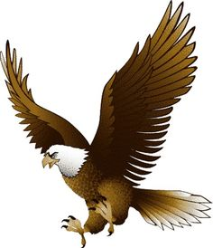 Eagle clipart #19, Download drawings