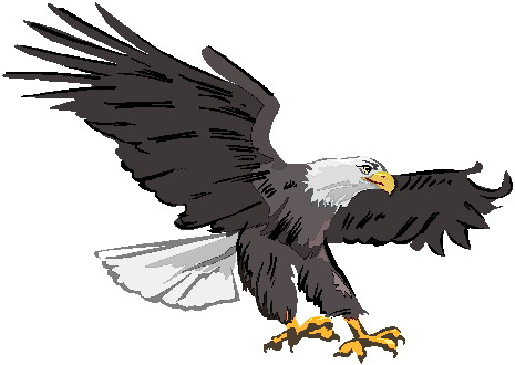 Eagle clipart #6, Download drawings