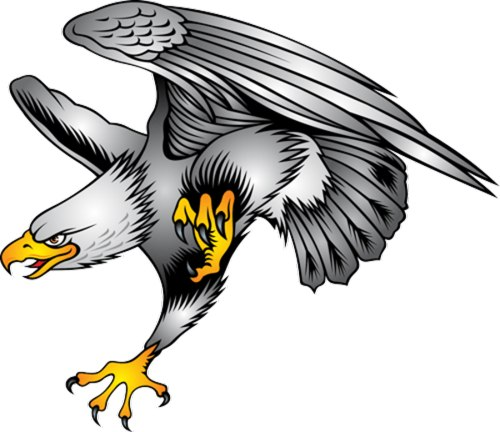 Eagle clipart #11, Download drawings