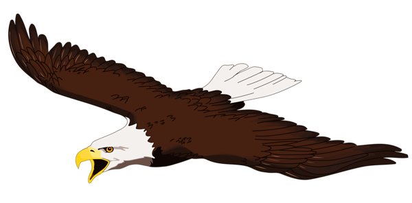 Eagle clipart #9, Download drawings