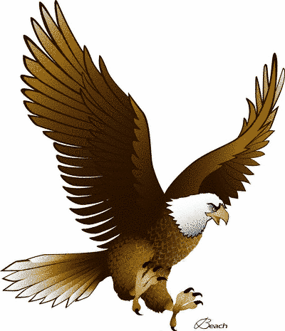Eagle clipart #17, Download drawings