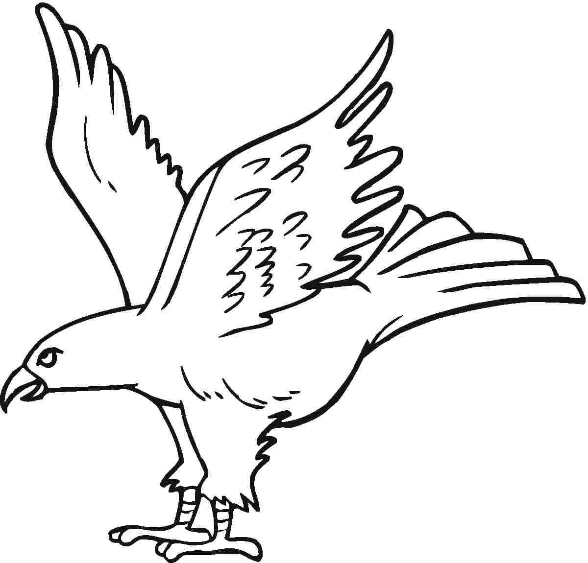 Eagle coloring #5, Download drawings