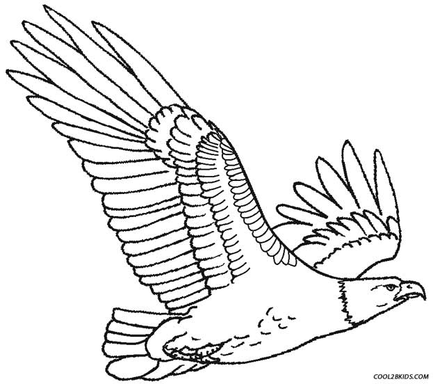 Eagle coloring #16, Download drawings