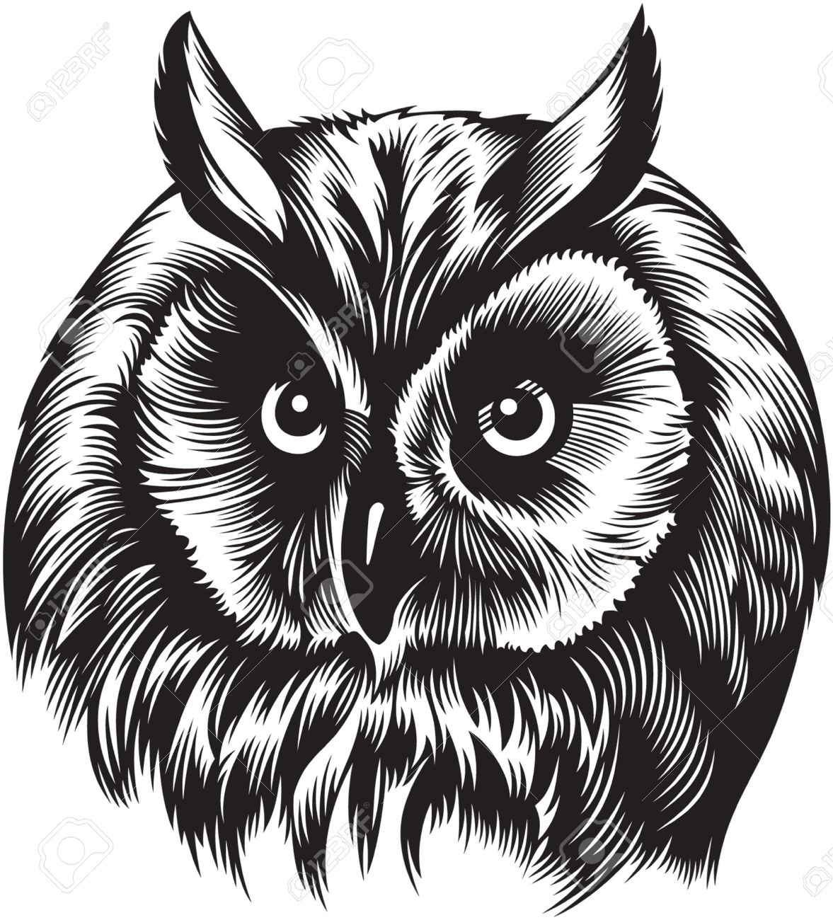 Eagle-owl clipart #2, Download drawings