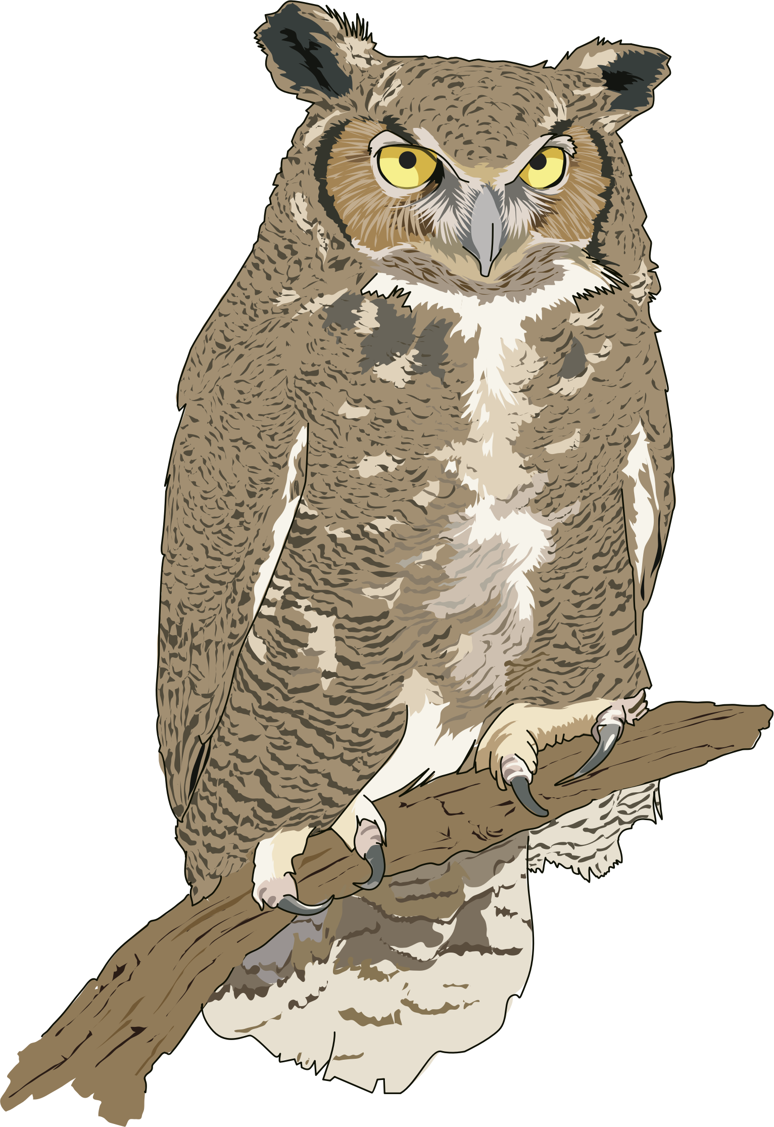 Eagle-owl clipart #18, Download drawings