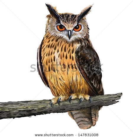 Eagle-owl clipart #16, Download drawings